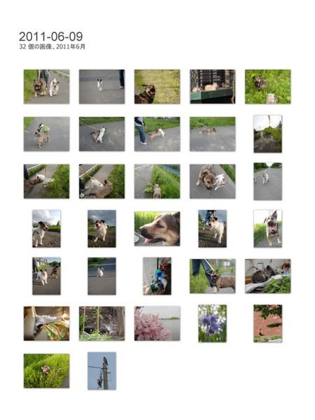 2011-06-091.jpg